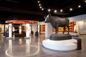 Larger-than-life bronze Bevo greets Hall of Fame visitors. Photo courtesy of Turner Construction Company.