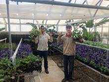 Landscape Service employees show beautifully grown flowers in the greenhouse
