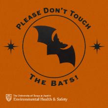 bats on Campus